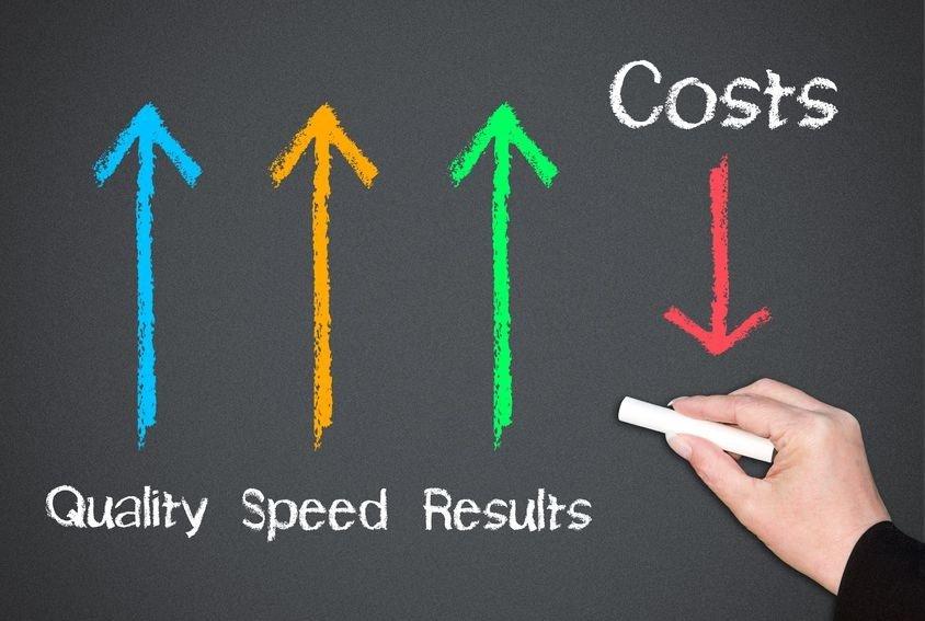 Minimizes IT Costs